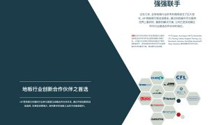Corporate Brochure PDF example in Chinese